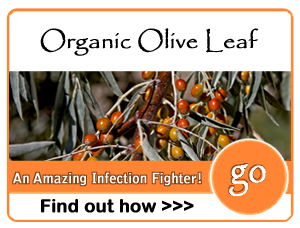 organicoliveleaf
